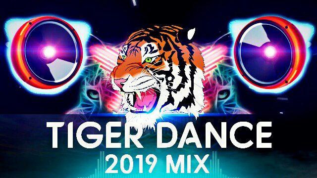 TIGAR DANCE 2019 DJ RJ & DJ DHAMMU RAIPUR SHER TAAL CG DJ SONG