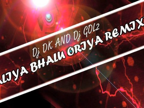 Dj Dk & Dj Gol2 - Kaliya Bhalu Oriya Remix