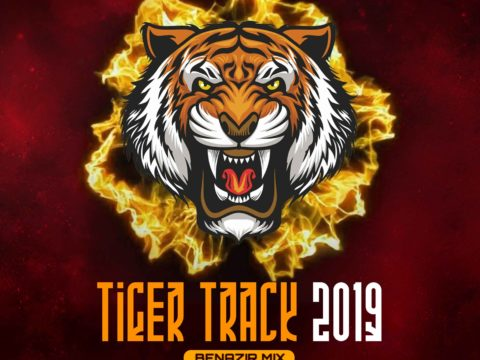 Edm Music Tiger Track 2020 (Benazir Mix) - Toffee Remix