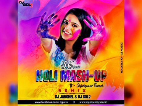 Cg Holi Mashup (Remix) - Dj Janghel & Dj Gol2