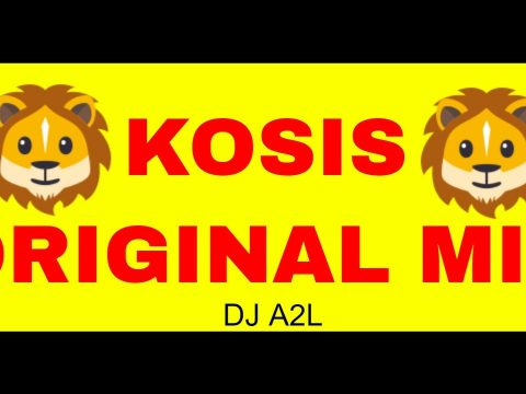 Best Edm Spotify Playlists By DJ A2L – KOSIS (ORIGINAL MIX)